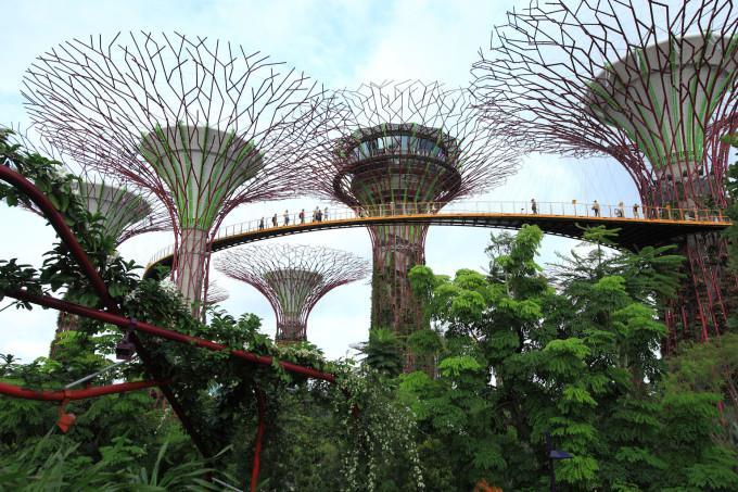 singapore1_1