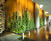 07.  PARKROYAL on Pickering Interior_Hotel Lobby_Living Wall_Photo Credit; Patrick Bingham Hall