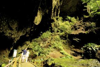 マレーシアの世界自然遺産で登山や洞窟探検を楽しもう!