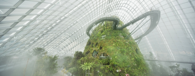 Cloud Forest 1_Fotor