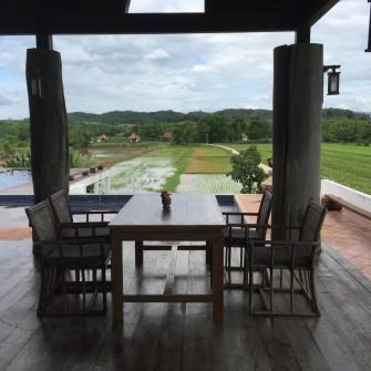 週末トリップ!タイ・チェンライの山奥に広がる茶畑と雲南料理