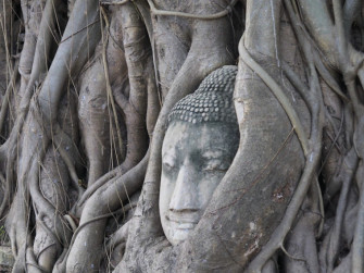 アユタヤの歴史を物語る、廃墟と化した寺院「ワット・マハタート」