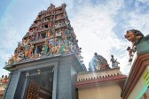 2015_Sri Mariamman Temple_Hi-Res_03 (Danny Santos)_Fotor