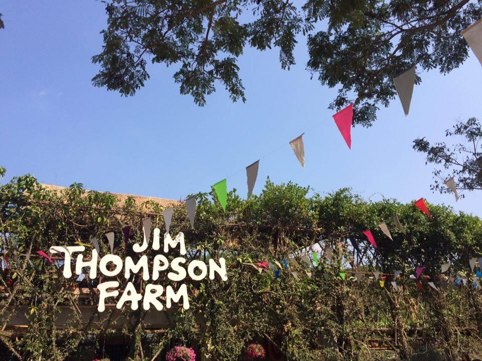 タイで真冬のひまわりを見られる「ジム・トンプソン・ファーム」