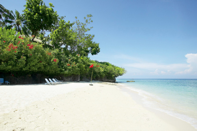 alegre beach resort_