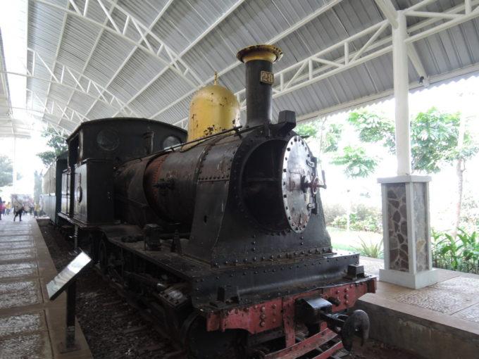 DSCN8875