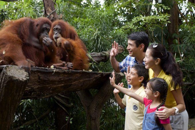 家族みんなで思いっきり遊ぶシンガポールの旅!