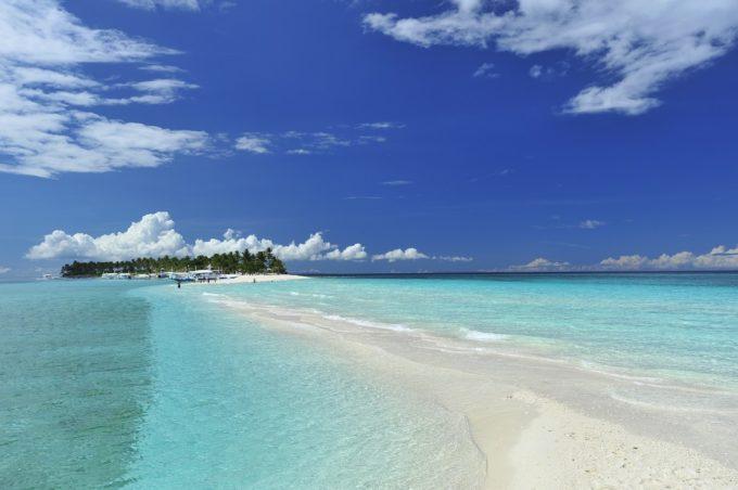 ニタリとの遭遇率は世界ナンバー1!セブ島北端沖のマラパスクア島