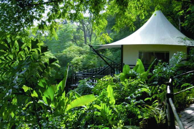 Four Seasons Tented Camp, Thailand Nov 2006. Photo © Manuel Zublena. info@manuelzublena.com