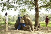 9_AGT_51945661_Mahout_Experience_
