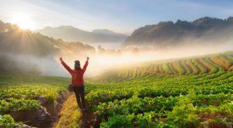 チェンマイの山岳エリアで叶える「浄化と癒しの旅」