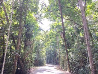 シンガポールとは思えない自然の宝庫!フェリーでたった10分のウビン島へ