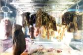 タイ食材の限りない可能性を料理で魅せるバンコクで話題の2軒